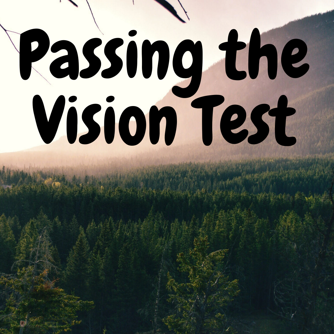 Passing the Vision Test